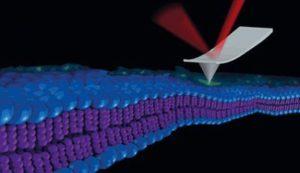 چالش فناوری ساخت تیپ میکروسکوپ نیروی اتمی ، ساخت تیپ میکروسکوپ نیروی اتمی